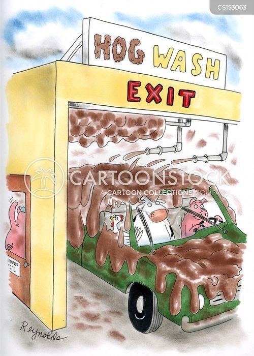 pig in mud cartoon