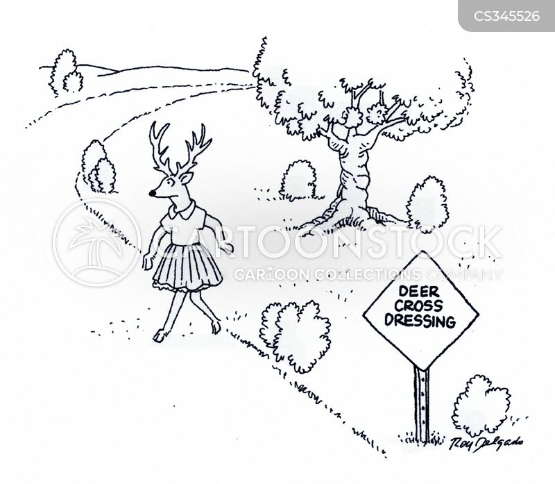 Deer Crossing Cartoons and Comics  funny pictures from CartoonStock