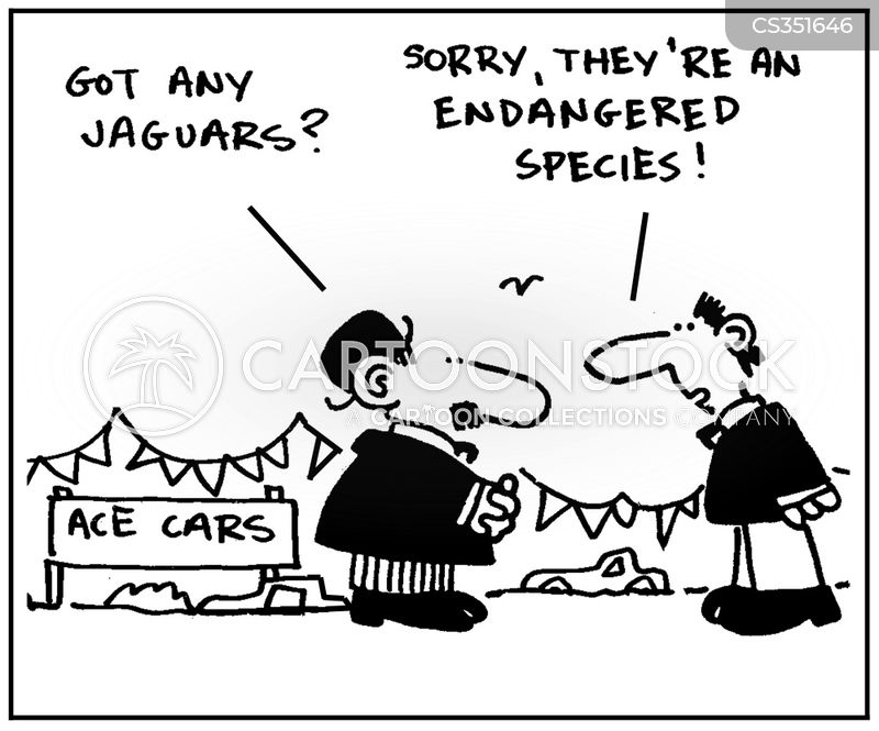 Cartoon Jaguar Pictures Jaguar Cartoon 6 of 12
