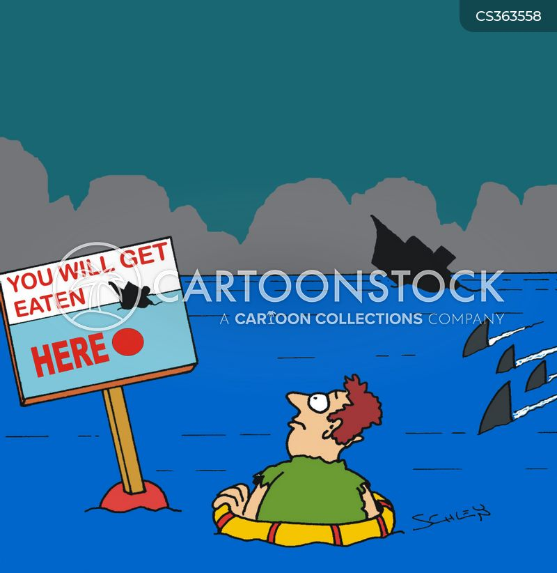 shark infested waters cartoon