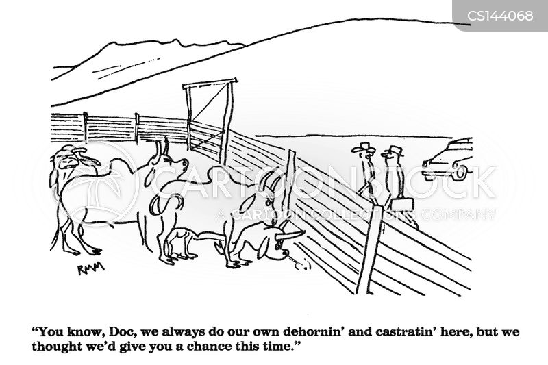 neutering cartoon