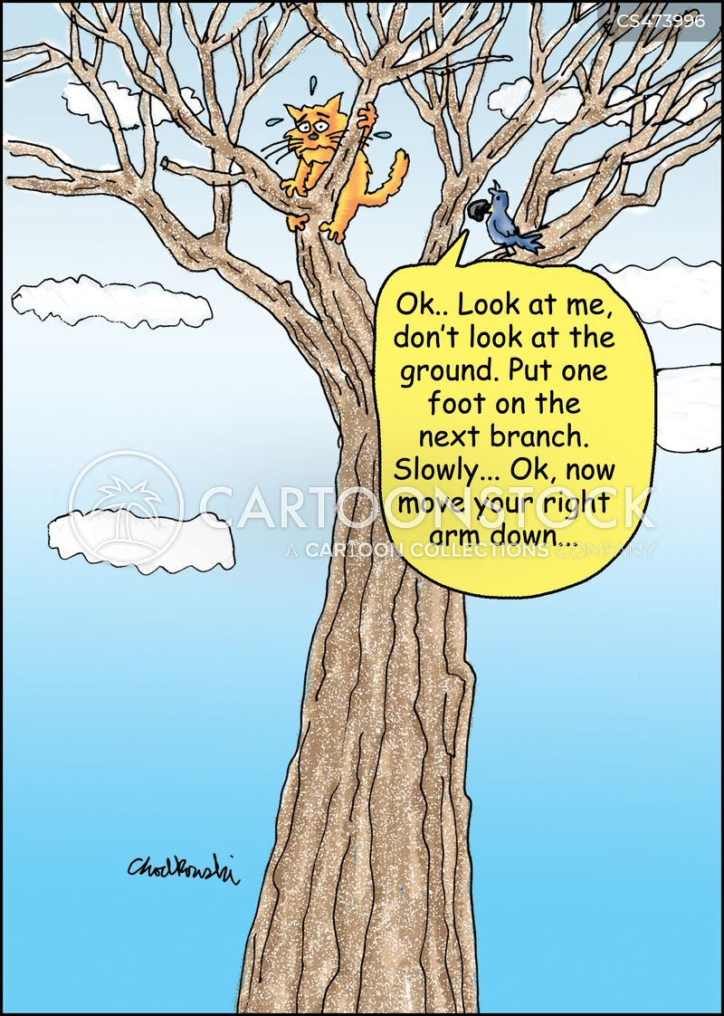 scared of heights cartoon