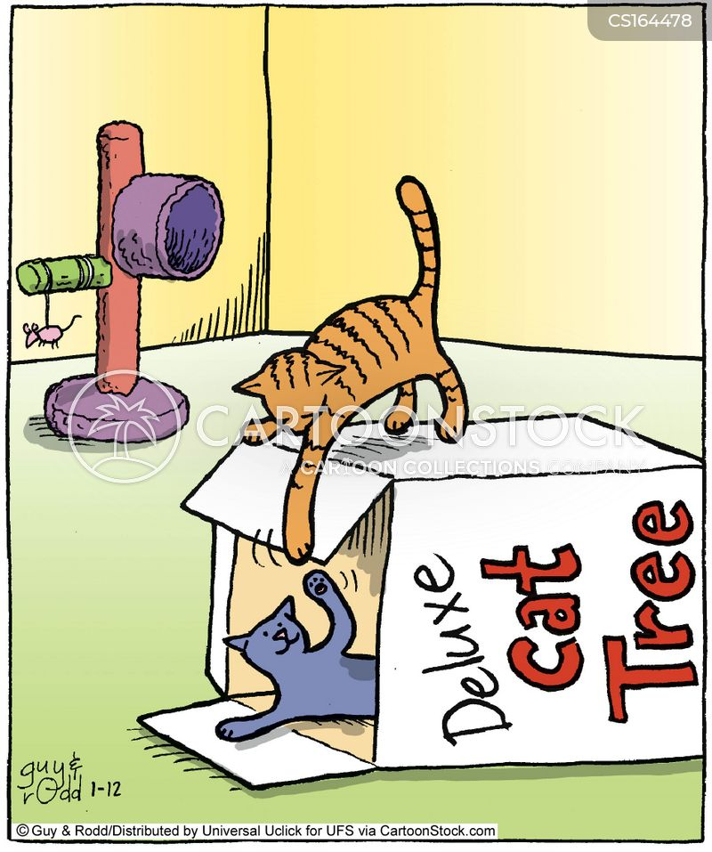 pet lovers cartoon