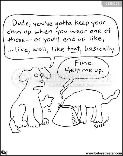 cat collars cartoons and comics