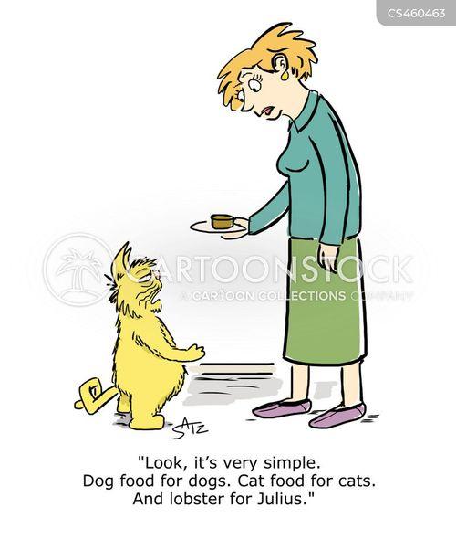 spoiled cat cartoon