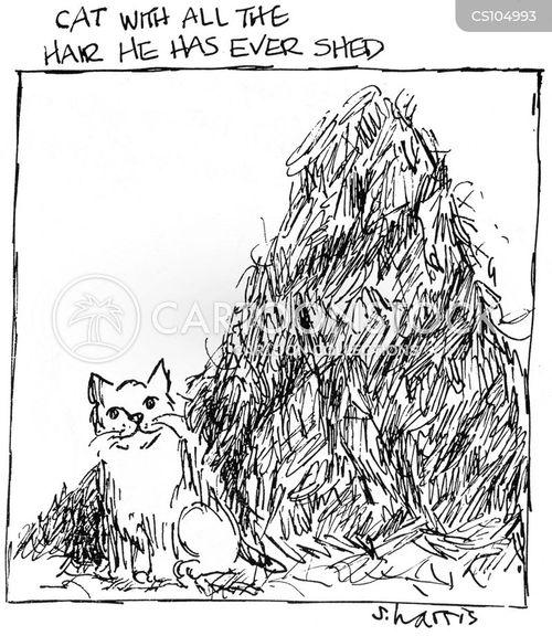 cat hairs cartoon