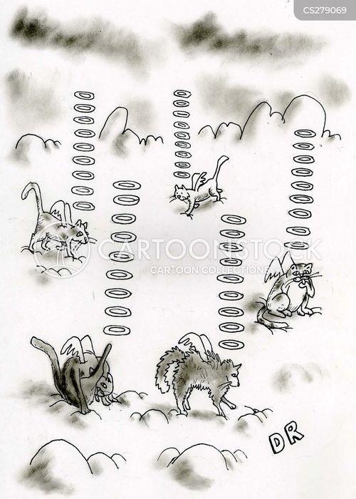 cat heaven cartoon