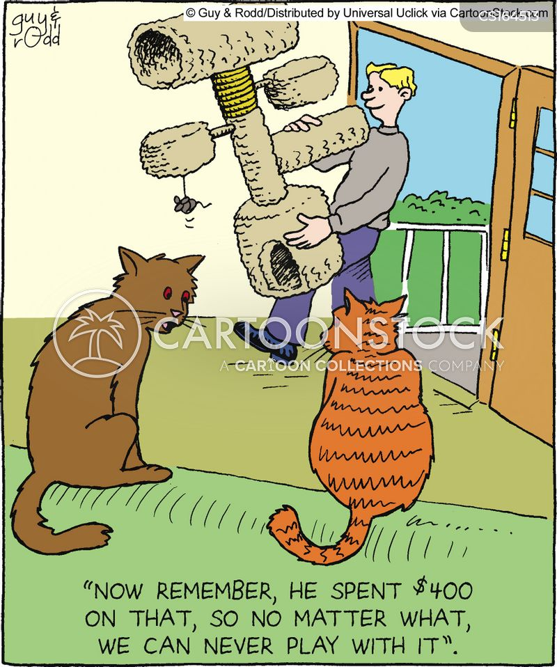 Kitty Cartoons and Comics - funny pictures from CartoonStock