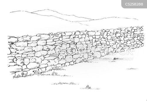 paddocks cartoon