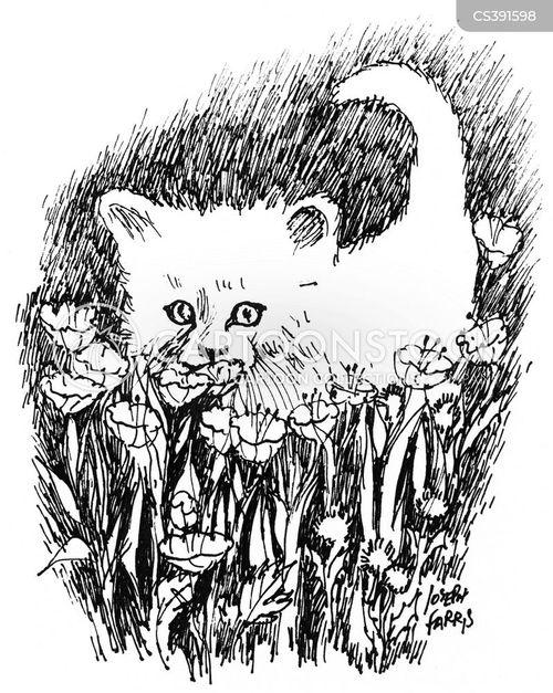 cute kittens cartoon