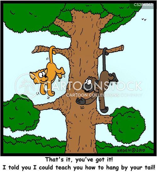 Tree Monkey Tree Cartoons And Comics Funny Pictures From Cartoonstock Cartoon monkey koala squirrel birds playing on tree wall stickers kids room nursery decor wall decals poster art rabbit giraffe grass mural. tree monkey tree cartoons and comics funny pictures from cartoonstock