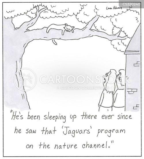 imitator cartoon