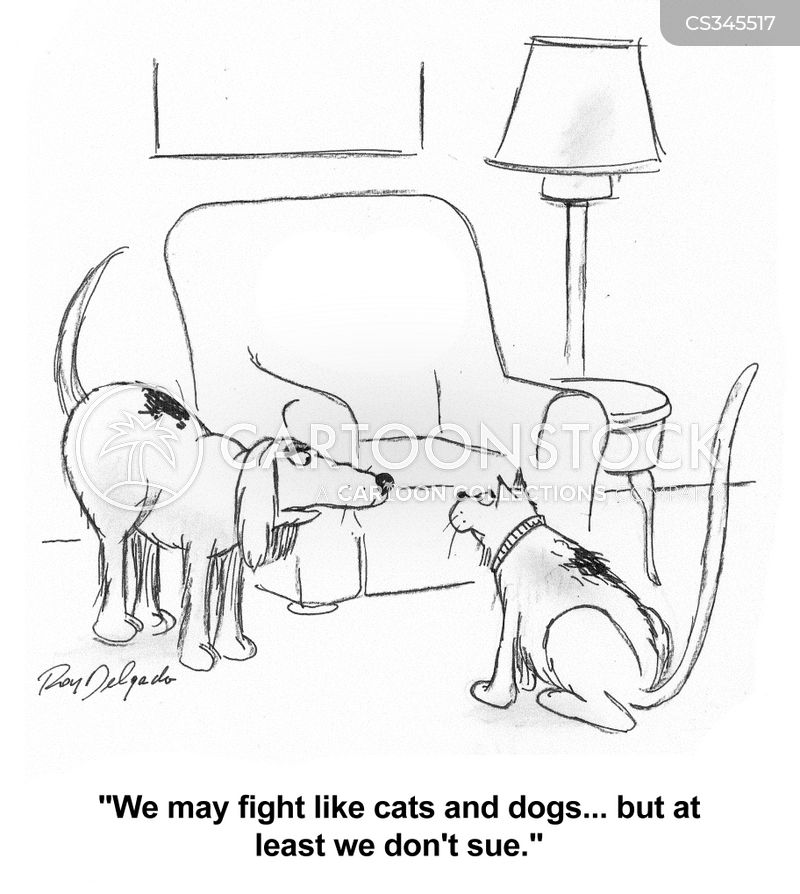 dogs and cats cartoon