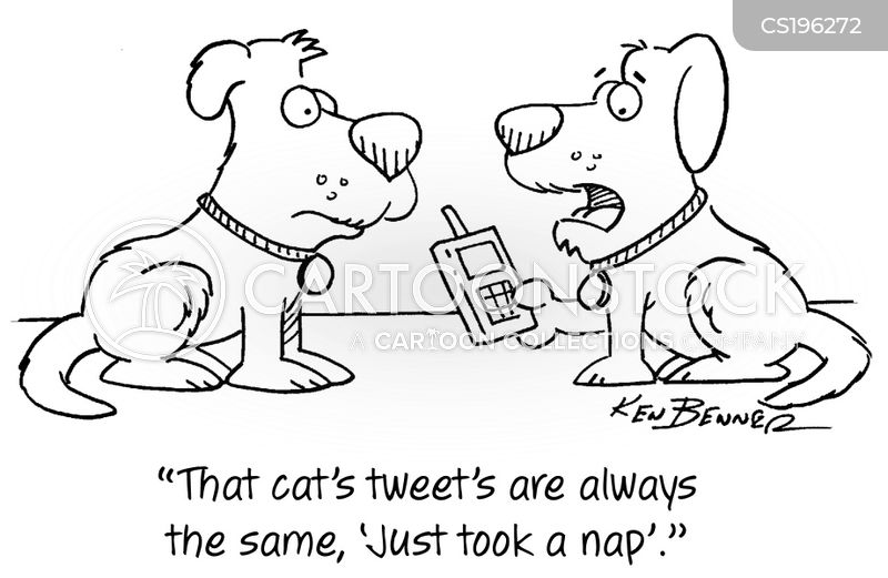 Cat Napping cartoons, Cat Napping cartoon, funny, Cat Napping picture, Cat Napping pictures, Cat Napping image, Cat Napping images, Cat Napping illustration, Cat Napping illustrations