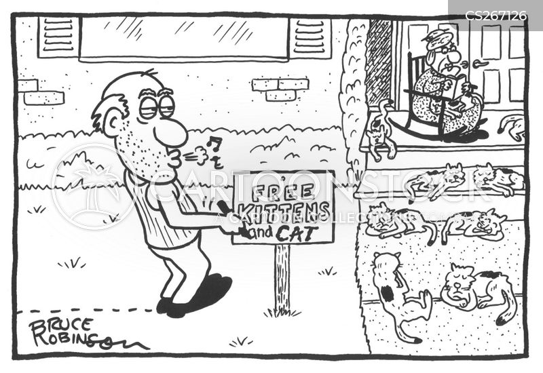 front porch cartoon