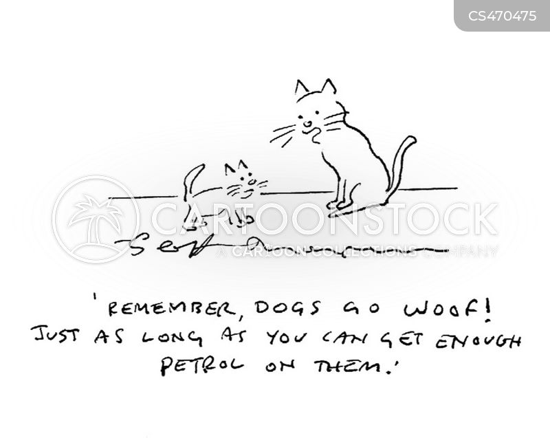 dog versus cat cartoon