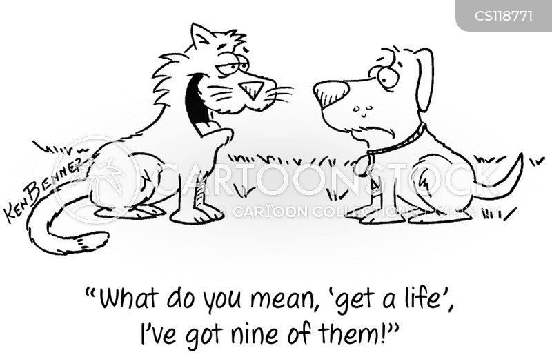 nine lives cartoon