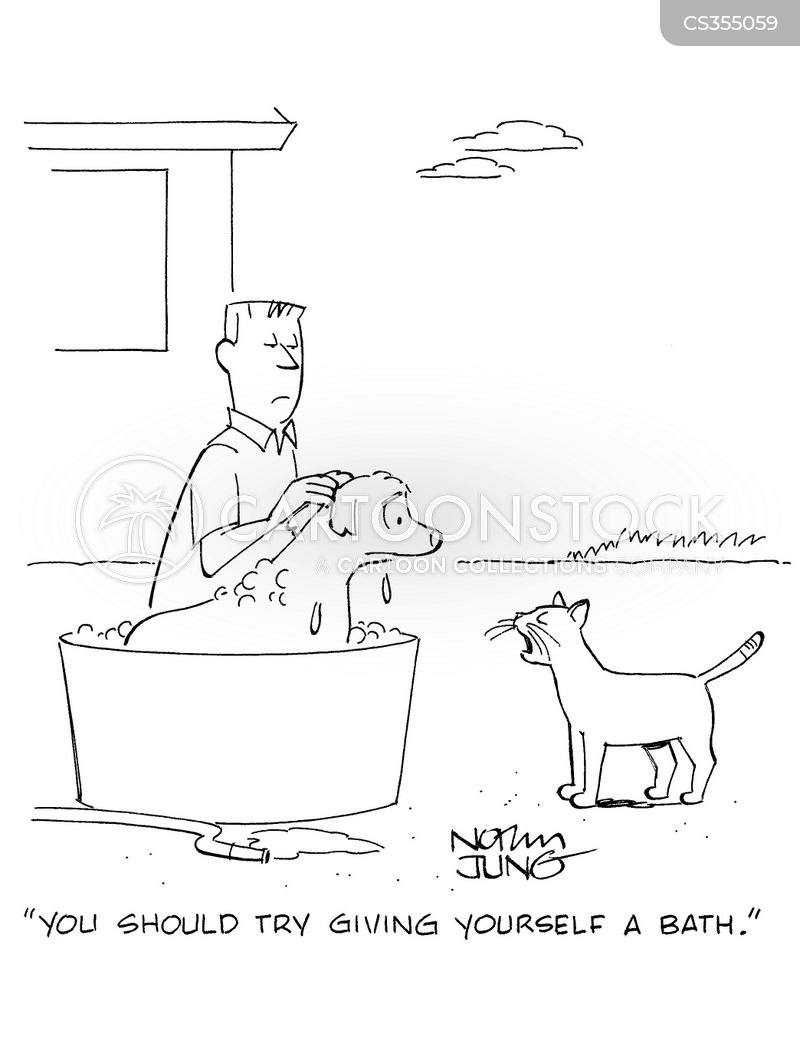 cat bath cartoon
