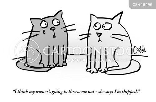 animal abuse cartoon