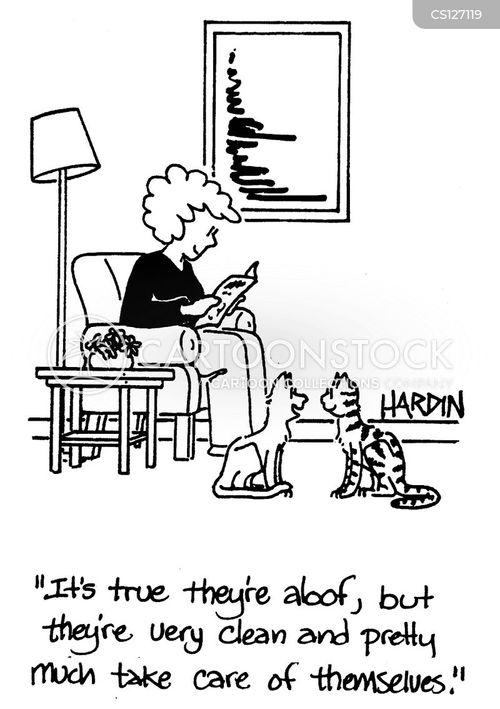 domestic animal cartoon