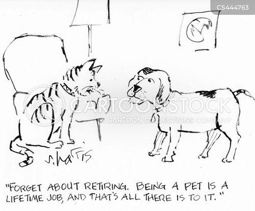 lifetime cartoon