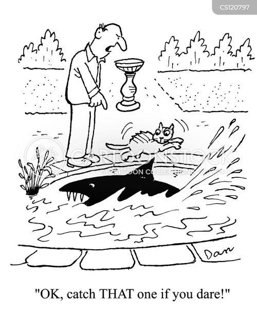 fish pond cartoon