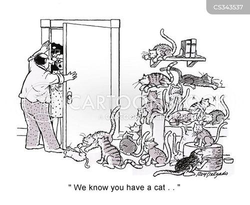 animal rescue cartoon