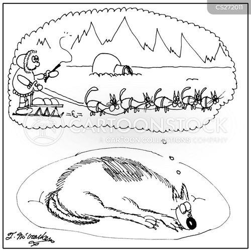 sledding cartoon