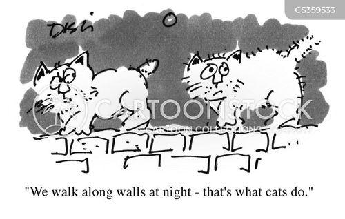 night nights cartoon