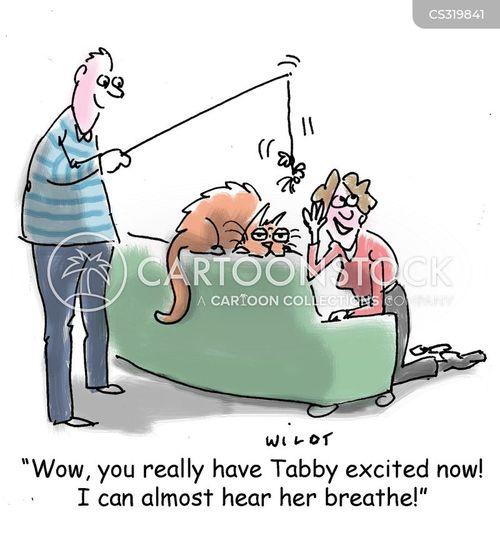 excitements cartoon