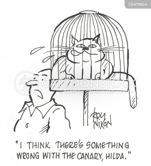 budgy cartoon