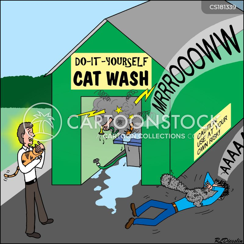animal groomer cartoon