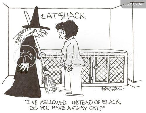 mellowed cartoon