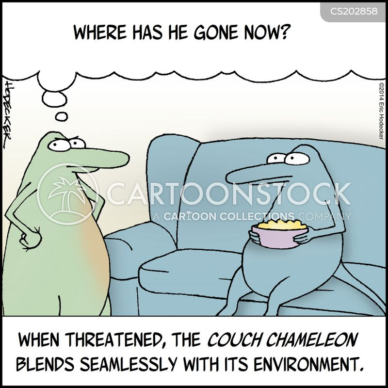 chameleons cartoon