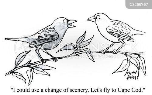 change of scene cartoon