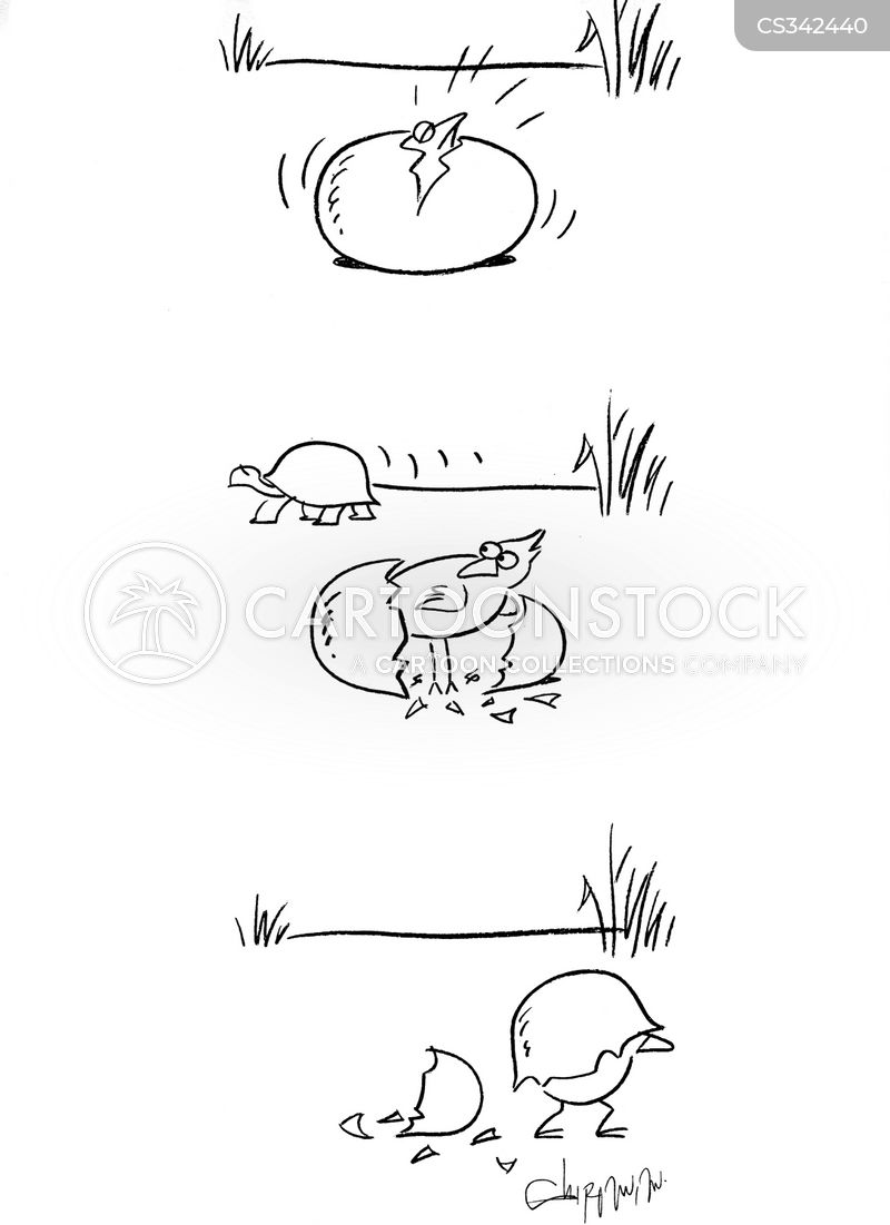 hatching cartoon