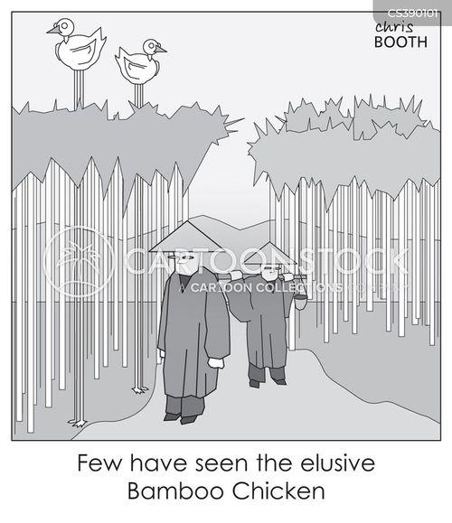 rare birds cartoon