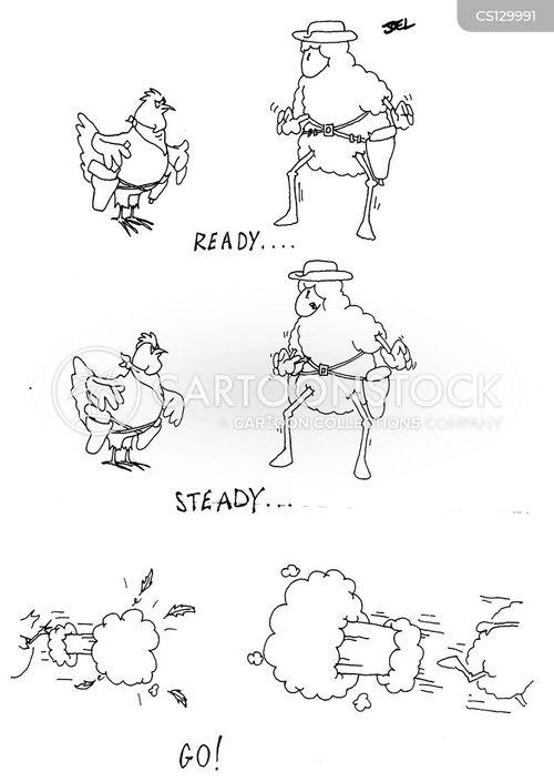 chook cartoon