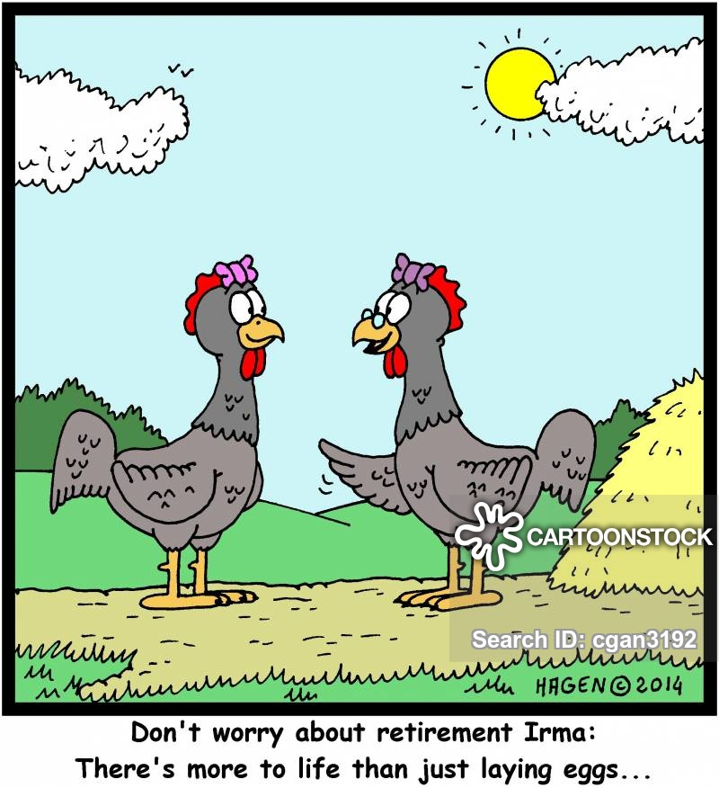 Egg Layers Cartoons and Comics - funny pictures from CartoonStock