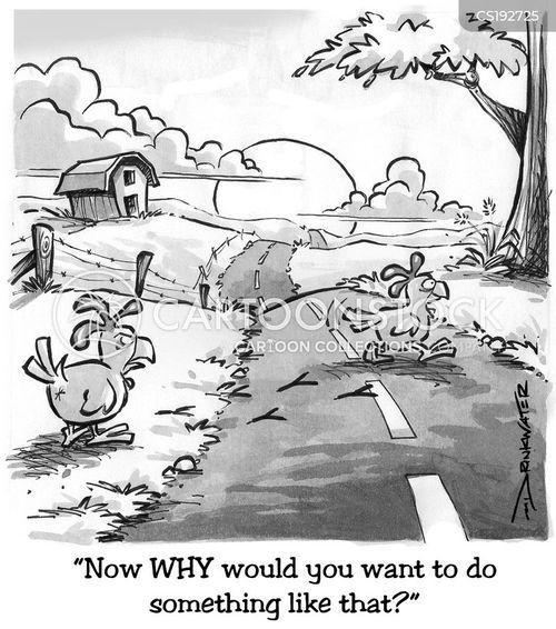 highway code cartoon