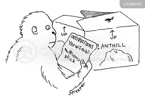 mail order cartoon