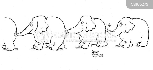 circus elephants cartoon