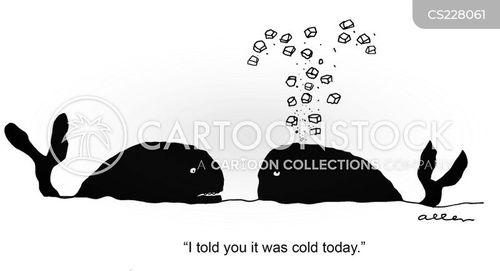 cold day cartoon