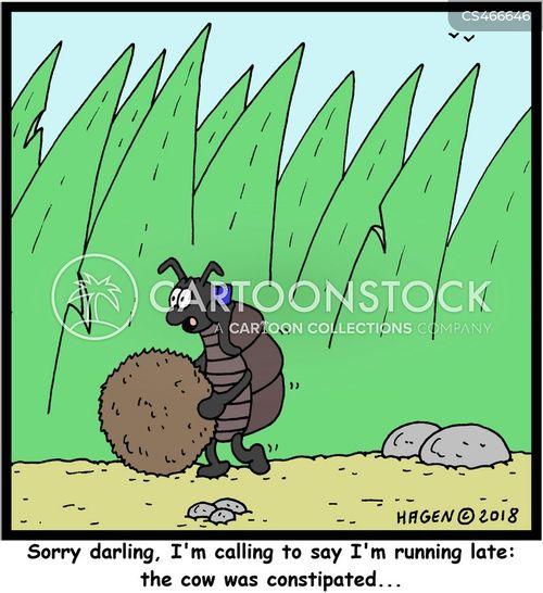 dungballs cartoon