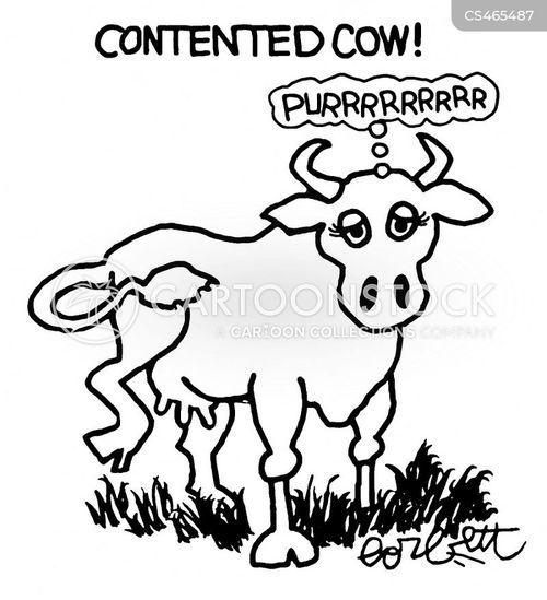 cow noises cartoon