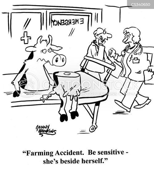 farming accident cartoon