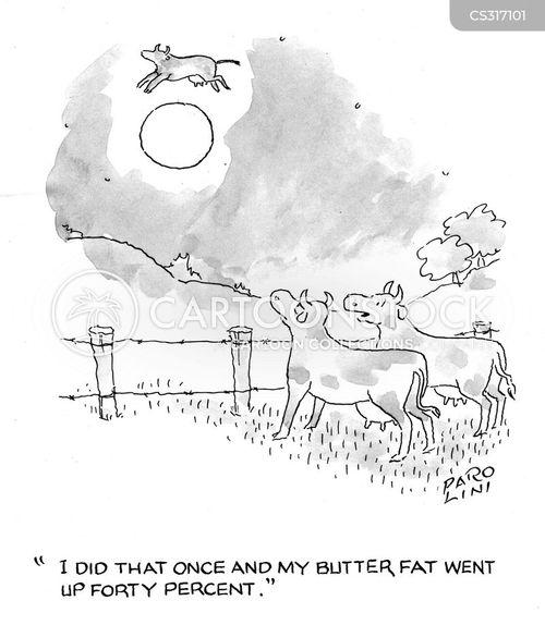 butter fat cartoon