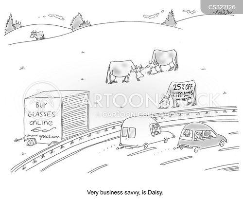 savvy cartoon