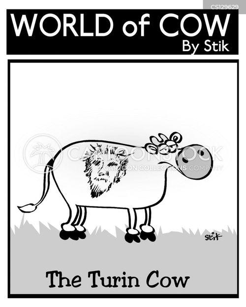 shroud cartoon