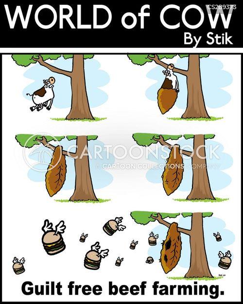 coccoon cartoon